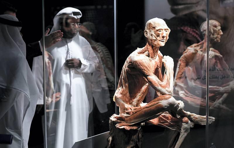 Abu Dhabi, United Arab Emirates - The ÔBody MuseumÕ, regionÕs first-ever ÔBody WorldsÕ exhibition is now open to public at the Khalifa University Campus on Murror road in Abu Dhabi. Khushnum Bhandari for The National