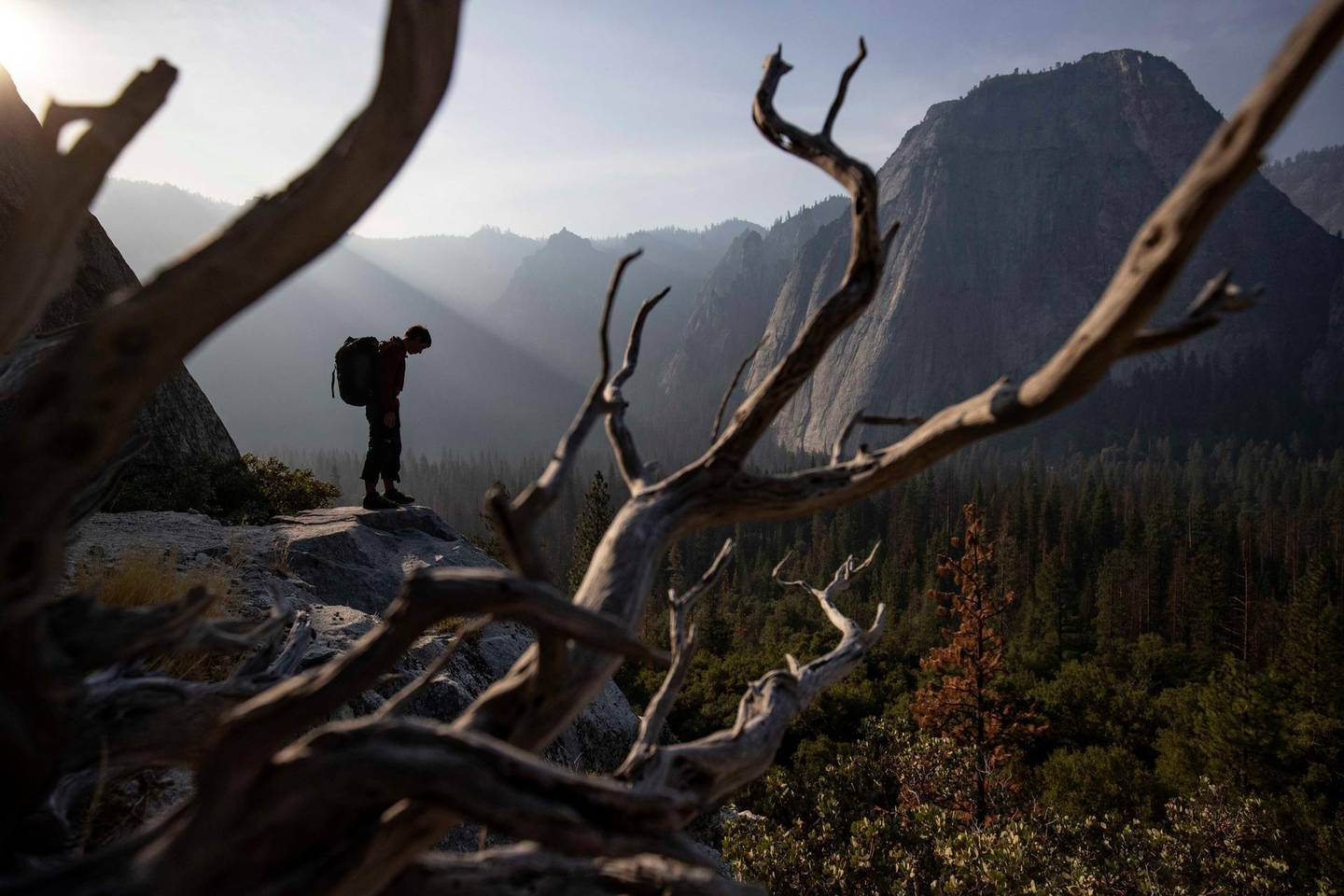 Alex Honnold at the base of El Capitan in Yosemite National Park. (National Geographic/Jimmy Chin)
