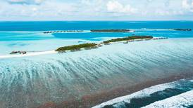World Oceans Day: five coastal resorts that offer ocean conservation experiences to travellers