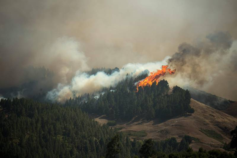 TOPSHOT - Flames rise from a forest fire raging in Montana Alta on the island of Gran Canaria on August 18, 2019. Authorities on the Spanish island of Gran Canaria evacuated residents as a forest fire broke out just days after another blaze raged in the same area.  / AFP / DESIREE MARTIN