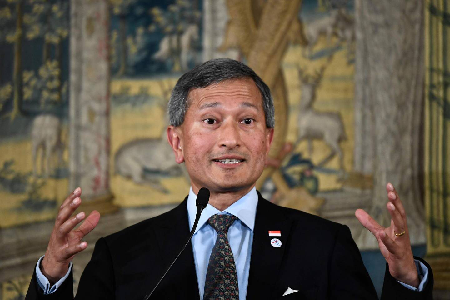 Singapore's Foreign Minister Vivian Balakrishnan gives a press conference after the 14th ASEM Foreign Ministers' Meeting at the Royal Palace of El Pardo near Madrid on December 16, 2019.   / AFP / OSCAR DEL POZO