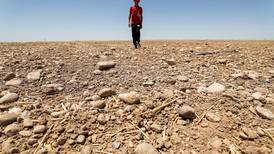 Water crisis forces Iraq to further reduce winter crop area