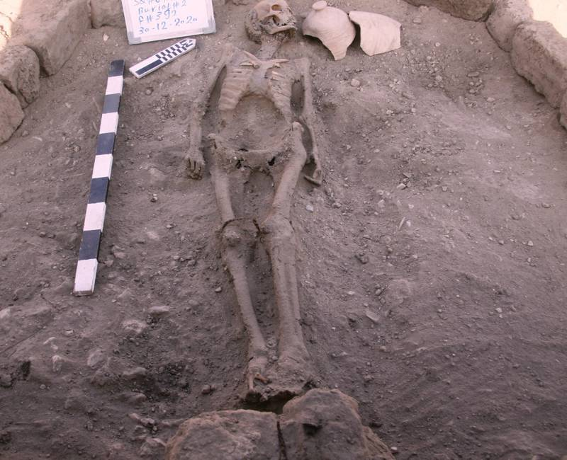 A skeletal human remain is seen in Luxor, Egypt, in this undated handout photo. Zahi Hawass Center for Egyptology and High Council of Antiquities Joint Mission/Handout via REUTERS ATTENTION EDITORS - THIS IMAGE WAS PROVIDED BY A THIRD PARTY. MANDATORY CREDIT. NO RESALES. NO ARCHIVES