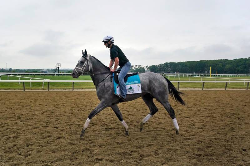 Essential Quality trains ahead of the 153rd running of the Belmont Stakes horse race in Elmont, N.Y., Thursday, June 3, 2021. (AP Photo/Seth Wenig)
