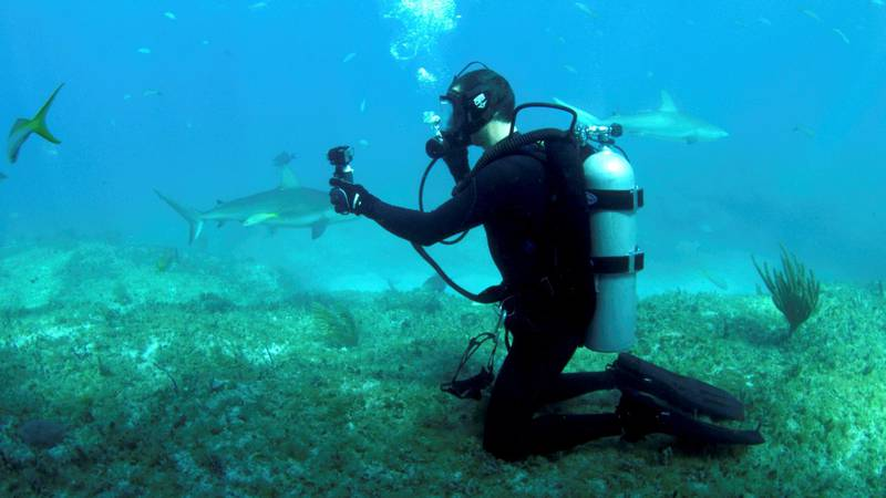 Bear Grylls underwater filming with GoPro in Bear vs Shark (Shark Week). Courtesy Discovery