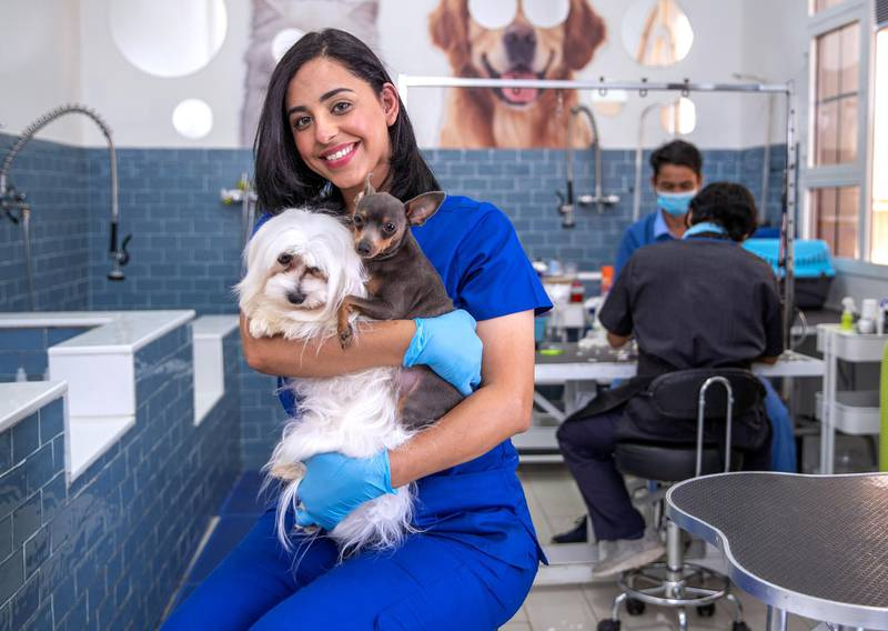 """Abu Dhabi, United Arab Emirates, April 1, 2020.   Photo project - Unsung heroes of the UAE.Name:  Afra Al DhaheriAge:  33Profession:  Assistant Veterinarian / Cloud 9 Pet Hotel OwnerNationality:  EmiratiVictor Besa / The NationalAnswers:    We took strict action with our clients regarding the incoming of the animals.  No one is allowed in our hospital without full PPE's and only under emergency situations.  Client's are only allowed to wait in their cars until we go out and pick them up.  If the client is in an emergency situation, they are allowed inside but must stay 1.5 meters away from the doctor and the dog or cat.  We have an """"X"""" marked on the floor and the client must just stay on it, they are not allowed to go any closer.  All updates are done on phone or via email. In showing support to our UAE doctors and healthcare workers, we are giving free srervices drop off and pick up,  daycare and food for their pets when they are on duty helping the Covid-19 patients at the hospitals."""