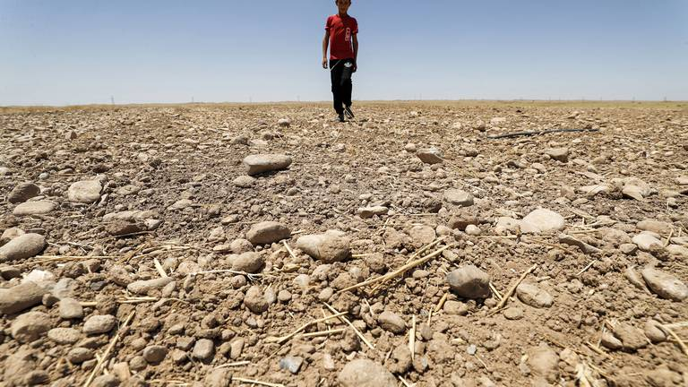 An image that illustrates this article The 76th UNGA must focus on the climate crisis