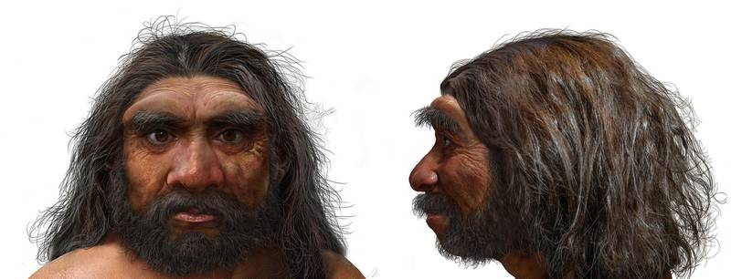 """A handout photo obtained on June 25, 2021 from EurekAlert! shows an illustration of a portrait of Dragon Man. Scientists announced Friday that a skull discovered in Northeast China represents a newly discovered human species they have named Homo longi or """"Dragon Man,"""" and the lineage may replace Neanderthals as our closest relatives. - RESTRICTED TO EDITORIAL USE - MANDATORY CREDIT """"AFP PHOTO /BYLINE """" - NO MARKETING - NO ADVERTISING CAMPAIGNS - DISTRIBUTED AS A SERVICE TO CLIENTS  / AFP / EUREKALERT! / CHUANG Zhao / RESTRICTED TO EDITORIAL USE - MANDATORY CREDIT """"AFP PHOTO /BYLINE """" - NO MARKETING - NO ADVERTISING CAMPAIGNS - DISTRIBUTED AS A SERVICE TO CLIENTS"""