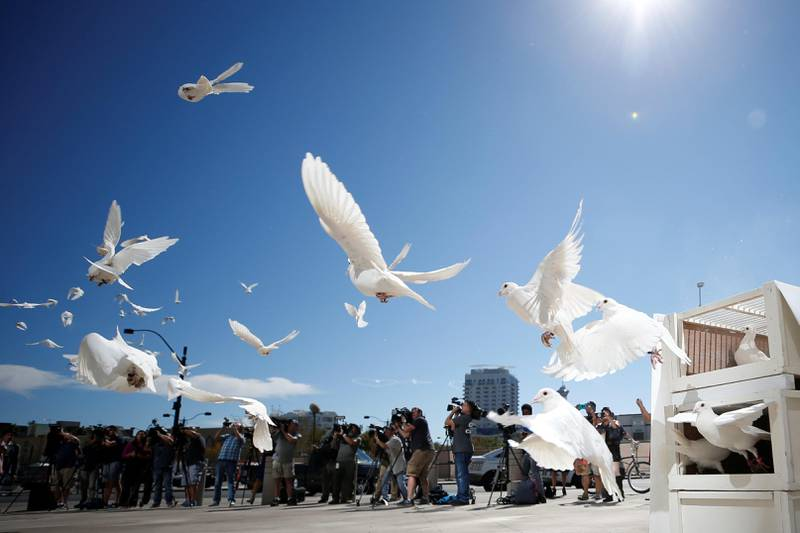 Doves are released for each victim of the Route 91 Harvest music festival mass shooting at City Hall plaza in Las Vegas, Nevada, U.S., October 7, 2017. REUTERS/Chris Wattie