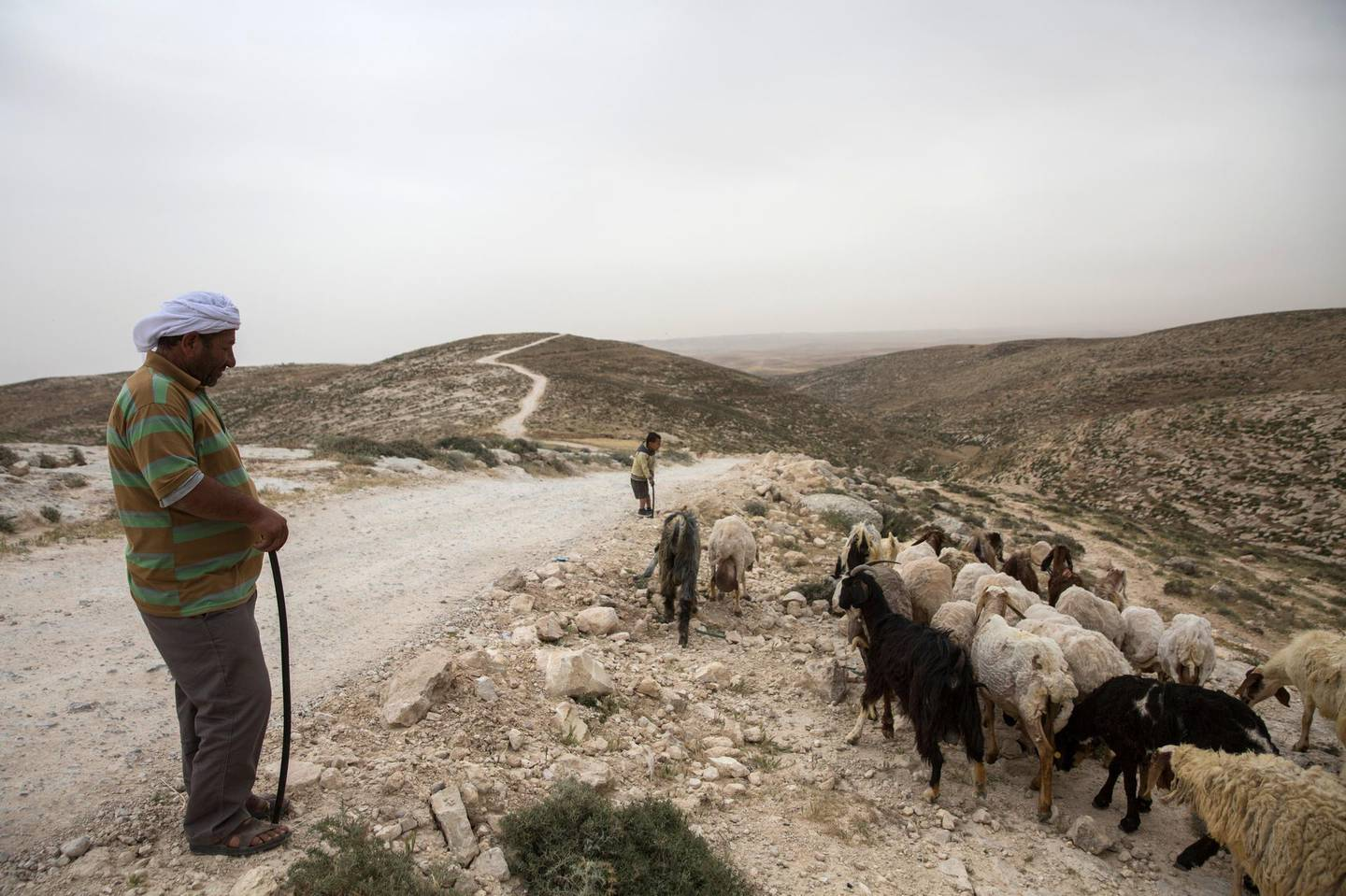 Palestinian shepherd Yasser Yassir Hamamdi,48, with his son as they take their flock of sheep and goats out to graze by the isolated village of Arakeez in the West Bank's south Hebron Hills .(Photo by Heidi Levine for The National