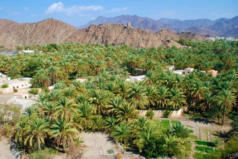 Mokazzah village is located in Izki. Oman News Agency