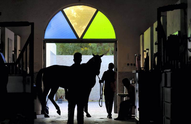 Sharjah, United Arab Emirates - November 28, 2020: People attend to racehorses in the stables. Saturday, November 28th, 2020 in Sharjah. Chris Whiteoak / The National