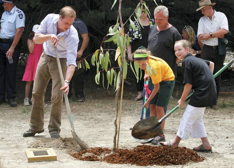 MELBOURNE, AUSTRALIA - JANUARY 21:  HRH Prince William helps plant a tree at the Flowerdale temporary village as he visits people affected by the 2009 bushfires on the third and final day of his unofficial visit to Australia on January 21, 2010 in Melbourne, Australia. HRH undertook numerous engagements during his 3 day Official visit to New Zealand, before arriving for a further 3 days in Australia 2 days ago. This is the second visit by the second-in-line to the throne, having been here at the age of 9 months with his parents in 1983.  (Photo by Scott Barbour/Getty Images)
