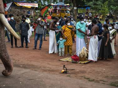 Kerala Covid theme - in pictures