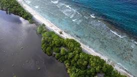 UNGA 2021: Climate change drives security concerns in Sahel and small island states