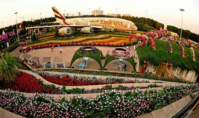 A structure made of flowers of an Emirates Airlines Airbus A380 that made it to the Guinness Book of World Records is displayed at the Dubai Miracle Garden, the world's largest flower garden, in the United Arab Emirates, on November 11, 2020. The Miracle Garden, home to giant floral structures and millions of flower and plant varieties, is open for visitors from November 1. / AFP / Karim SAHIB