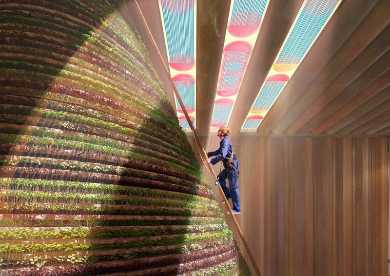 FOR RAMOLA'S STORY ON NETHERLANDS EXPO PAVILION. A 'rainmaker' inside the Netherlands pavilion at Expo 2020 Dubai will harvest water, irrigate the plants and keep the interior cool. Courtesy: V8 Architects