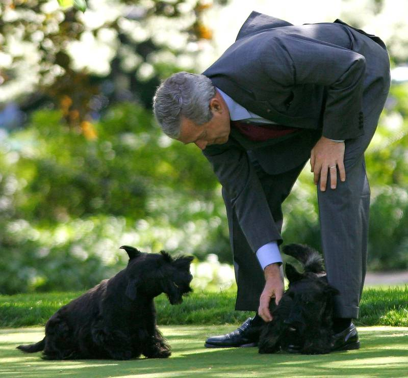 US President George W. Bush plays with his dogs Barney and Mrs. Beazley on the South Lawn of the White House shortly after delivering remarks on US energy and the future to the Small Business Administration's National Small Business Week Conference 27 April 2005 at the Washington Hilton Hotel.   AFP Photo/Paul J. RICHARDS (Photo by PAUL J.RICHARDS / AFP)