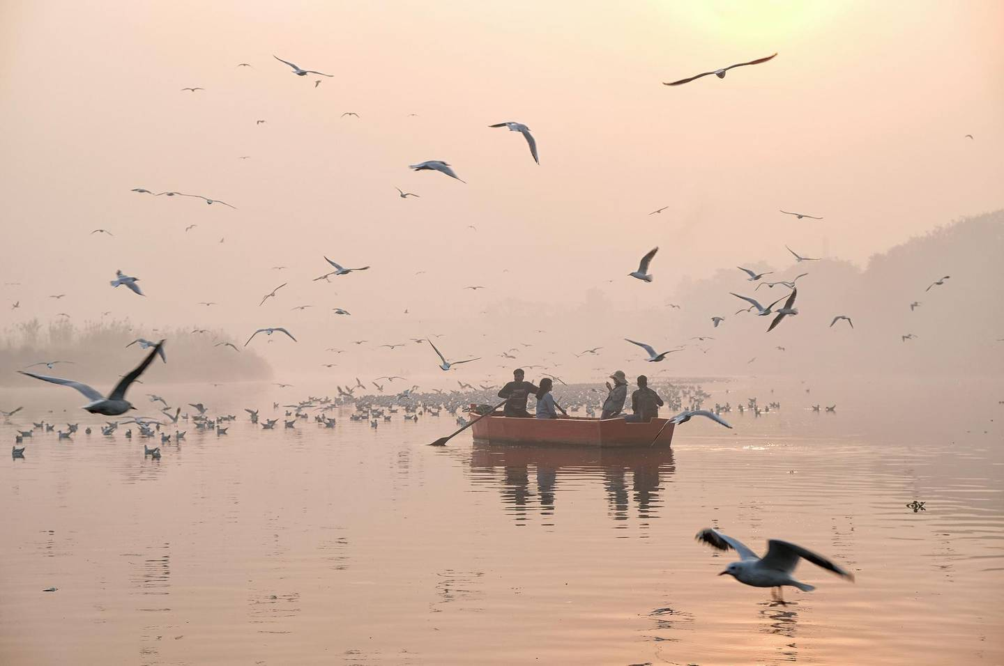 TOPSHOT - Indian women take pictures on a boat as migratory birds fly overhead on the Yamuna River on a morning of heavy air pollution in New Delhi on November 20, 2018. Smog levels spike during winter in Delhi, when air quality often eclipses the World Health Organization's safe levels. Cooler air traps pollutants -- such as from vehicles, building sites and farmers burning crops in regions outside the Indian capital -- close to the ground. / AFP / Noemi Cassanelli