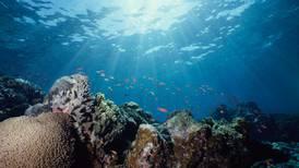 'Very poor' outlook for Australia's Great Barrier Reef