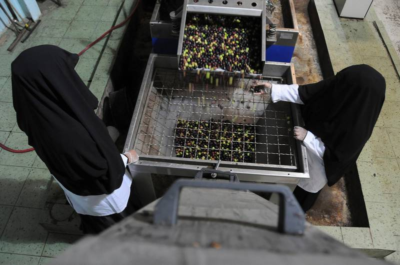 Veil-clad female workers process olives at a factory for pickling olives in the Saudi city of Tabuk October 23, 2013. REUTERS/Mohamed Al Hwaity (SAUDI ARABIA - Tags: AGRICULTURE SOCIETY FOOD BUSINESS)