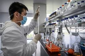 Japanese scientists closer to developing vaccine against all coronaviruses