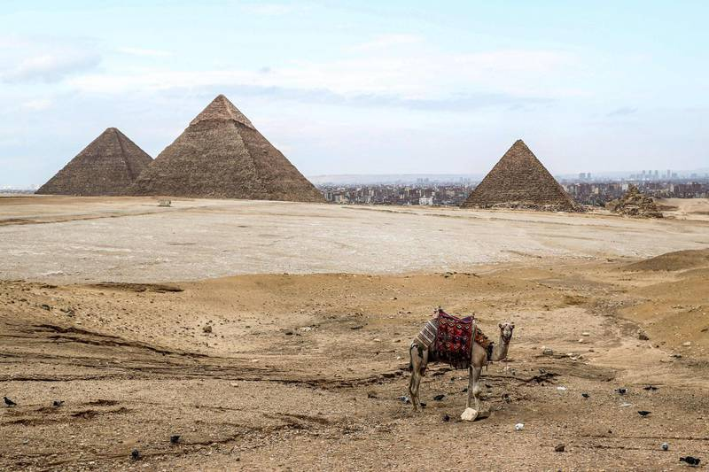 TOPSHOT - A camel waits at an overlook by the (L to R) Great Pyramid of Khufu (Cheops), Pyramid of Khafre (Chephren), and Pyramid of Menkaure (Menkheres) at the Giza pyramids necropolis on the southwestern outskirts of the Egyptian capital on March 13, 2020.   / AFP / Mohamed el-Shahed