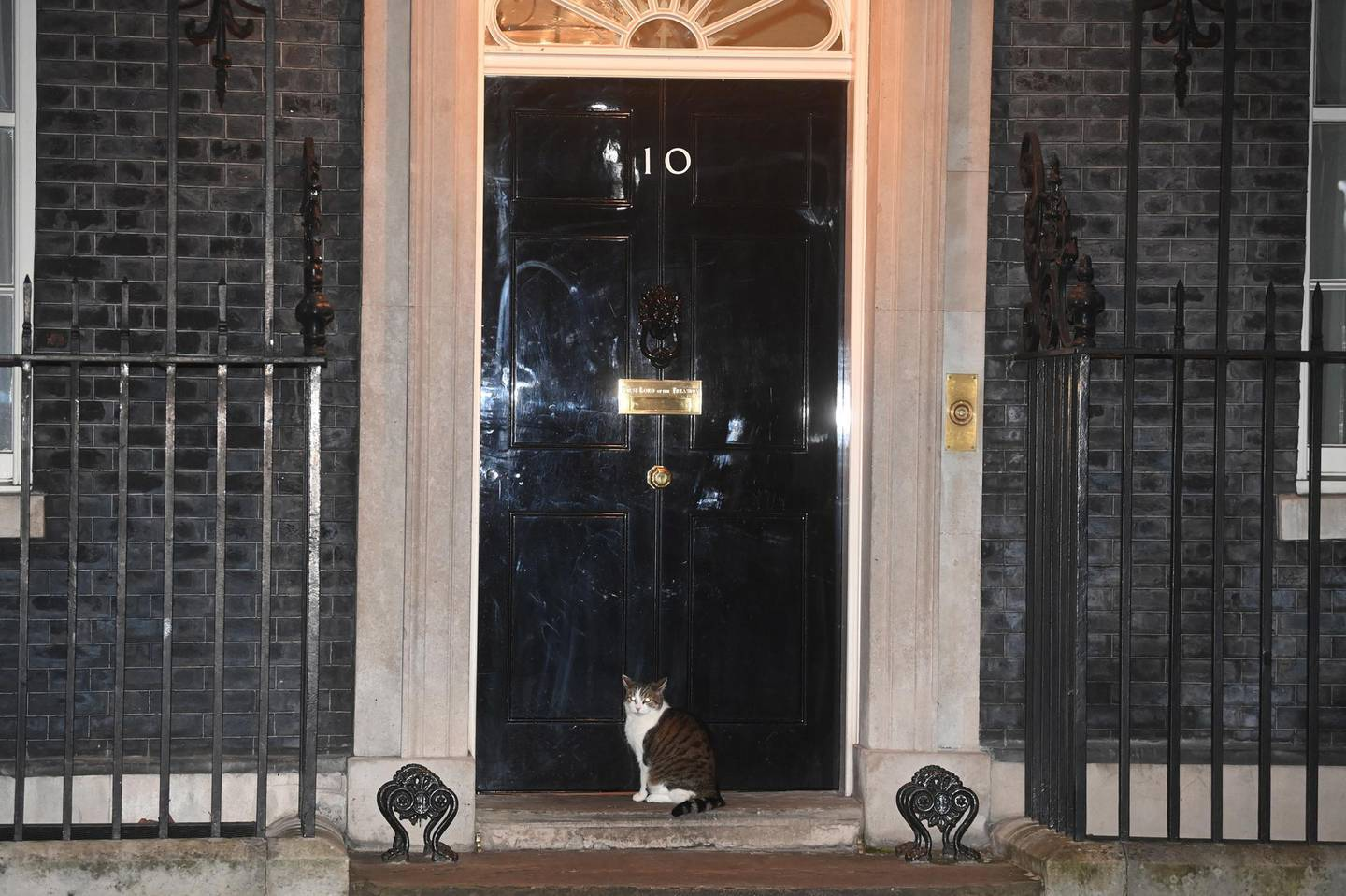 epa08925309 Apart from Larry the Cat, the door to 10 Downing Street, the official residence of the British Prime Minster, stands empty during the Clap for Heroes initiative in London, Britain, 07 January 2021. Clap for Carers, an initiative for members of the public to applaud National Health Service (NHS) workers, has returned under a new name of Clap for Heroes. The weekly applause founded by Annemarie Plas for front-line NHS staff and other key workers ran for ten weeks during the UK's first coronavirus lockdown spring 2020. Plas later distanced herself from the new initiative.  EPA/NEIL HALL