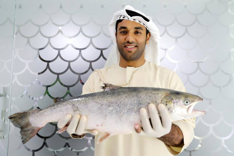 DUBAI , UNITED ARAB EMIRATES , March 27 – 2019 :- Bader Al Mabarak CEO of Dubai's 'Fish Farm' holding the salmon fish at the Fish Farm in Jebel Ali Free Zone in Dubai. ( Pawan Singh / The National ) For Business/Instagarm/Big Picture. Story by Sarah