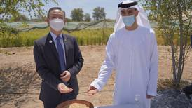 Desert agriculture will be a driver of the UAE's post-pandemic strategy