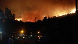 Forest fire closes in on Turkish power station