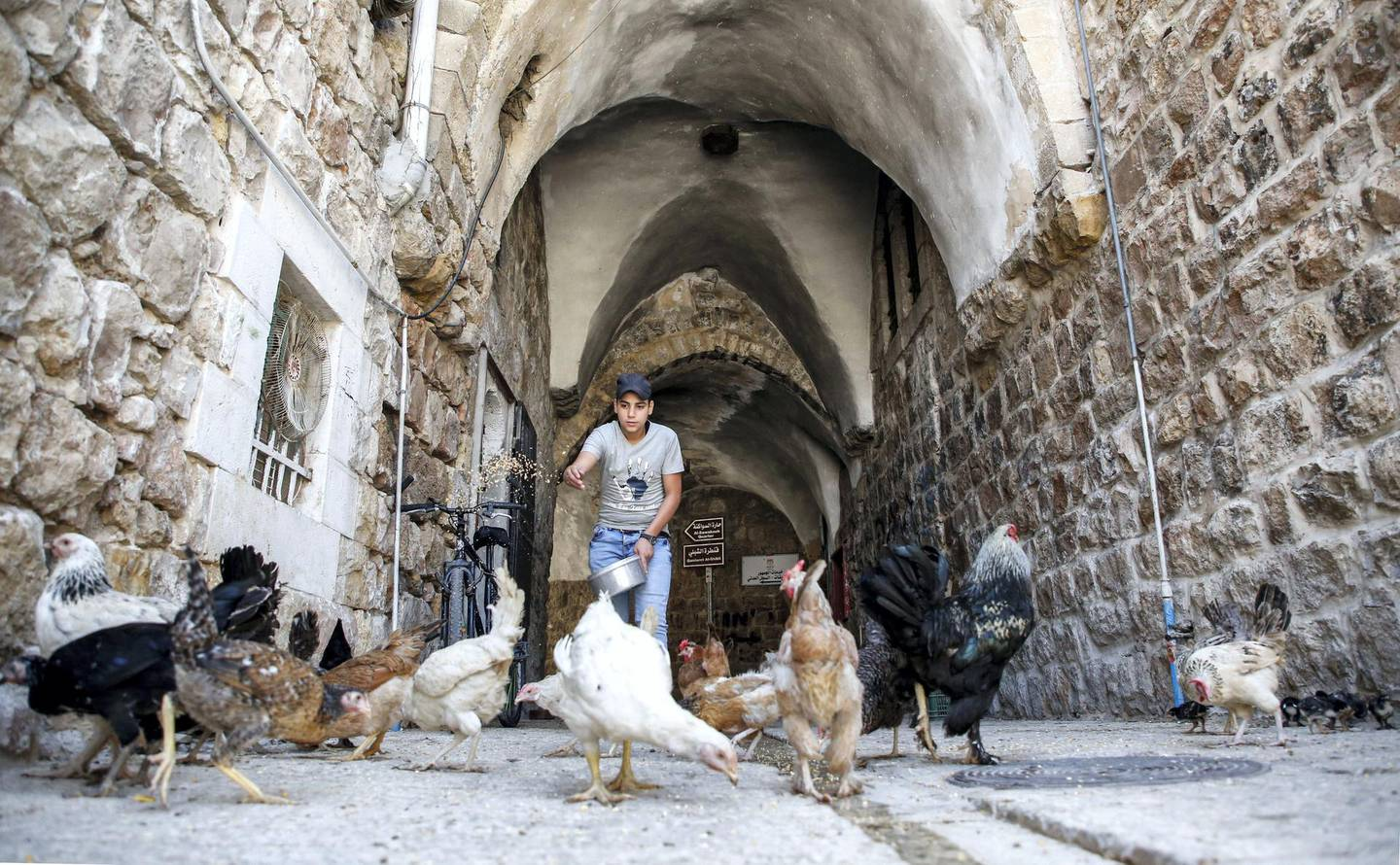A Palestinian feeds hens in an alley of the old market of the divided West Bank city of Hebron, on July 7, 2017. - On July 7, 2017 UNESCO declared in a secret ballot the Old City of Hebron in the occupied West Bank a protected heritage site. Hebron is home to more than 200,000 Palestinians, and a few hundred Israeli settlers who live in a heavily fortified enclave near the site known to Muslims as the Ibrahimi Mosque and to Jews as the Cave of the Patriarchs. (Photo by HAZEM BADER / AFP)