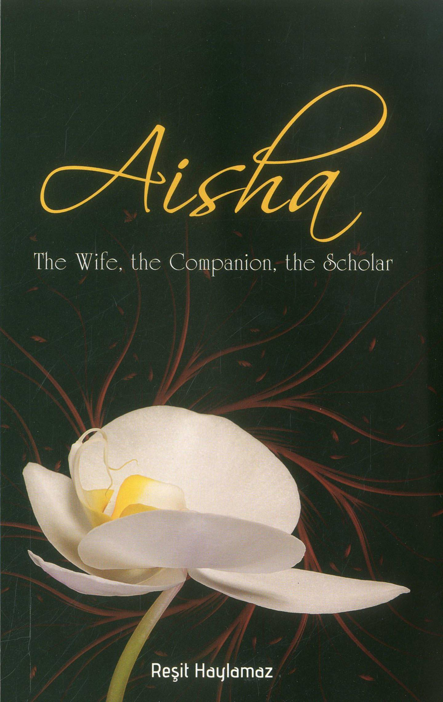 Aisha: The Wife, the Companion, the Scholar by Resit Haylamaz. Courtesy Tughra Books