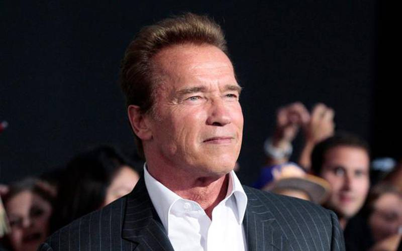 """Cast member Arnold Schwarzenegger poses at the premiere of """"The Expendables 2"""" at the Grauman's Chinese theatre in Hollywood, California in this August 15, 2012 file photo. A year after leaving the California governor's office and becoming tabloid fodder for fathering a boy with his family's housekeeper and splitting with his wife, Maria Shriver, the 65-year old former bodybuilder will star in no less than three Hollywood movies over the next 12 months.  REUTERS/Mario Anzuoni/Files (UNITED STATES - Tags: ENTERTAINMENT HEADSHOT)"""