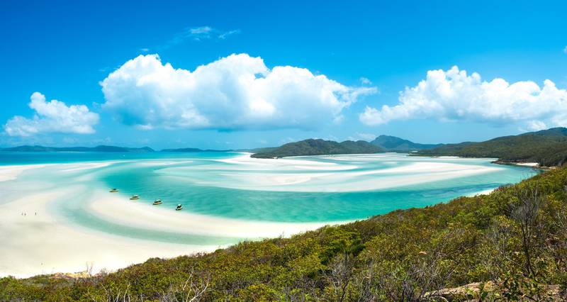 Whiteheaven beach, Whitsunday island, Queensland. Getty Images