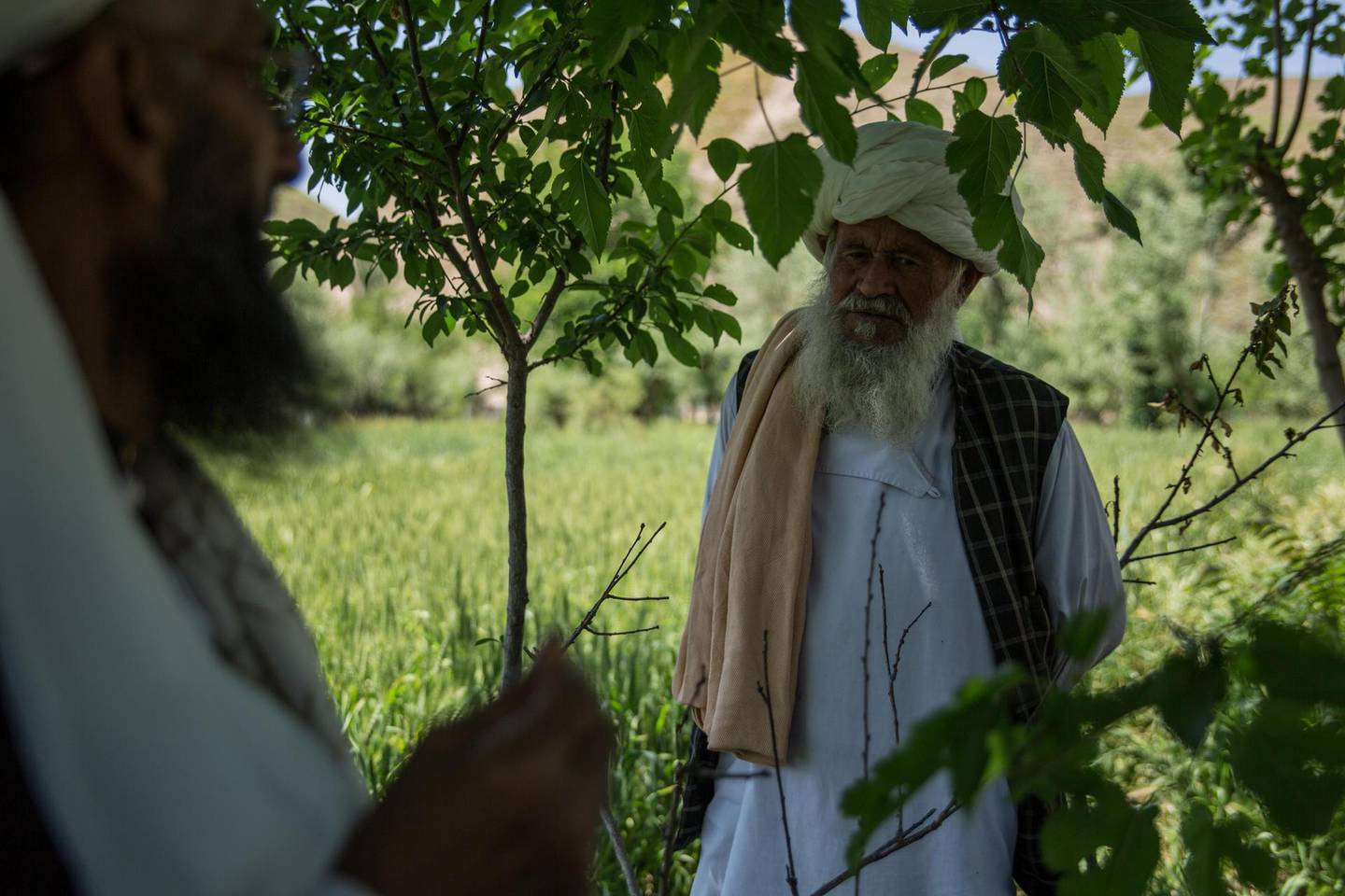 Abdul Rahim, 67, is a farmer who divides his farming land between government and Taliban-held land in rural Badghis province. Stefanie Glinski for The National