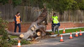 Storm kills three and knocks out power in Melbourne