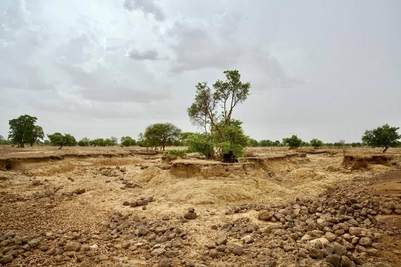 KAYA, BURKINA FASO. MAY 21 2019. A dry riverbed near Kaya in northern Burkina Faso. (Photo by Giles Clarke/UNOCHA via Getty Images)