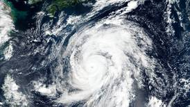 Rugby World Cup 2019: England and All Blacks games cancelled due to 'violent' typhoon
