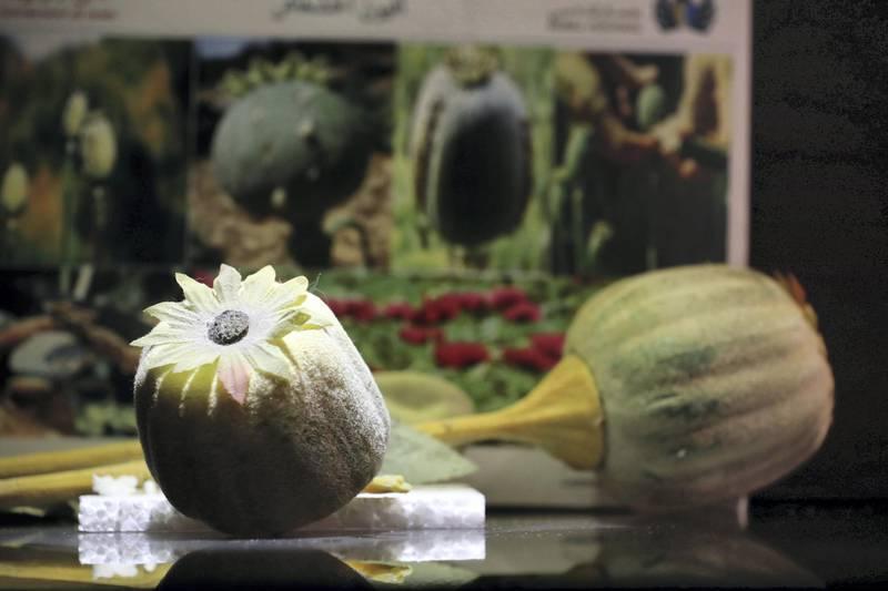 Dubai, United Arab Emirates - July 07, 2019: A replica Opium plant at exhibition of seizures at Dubai Airport. Sunday the 7th of July 2019. DXB, Dubai. Chris Whiteoak / The National