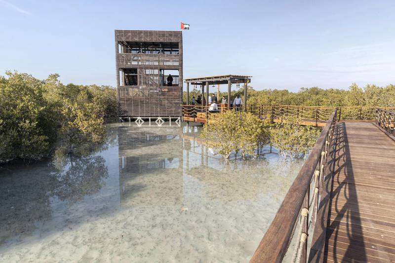 ABU DHABI, UNITED ARAB EMIRATES. 30 JANUARY 2020. The newly launched Mangrove Walk at Al Jubail Islandi. A specially build viewing platform.(Photo: Antonie Robertson/The National) Journalist: Janice Rodrigues. Section: National.