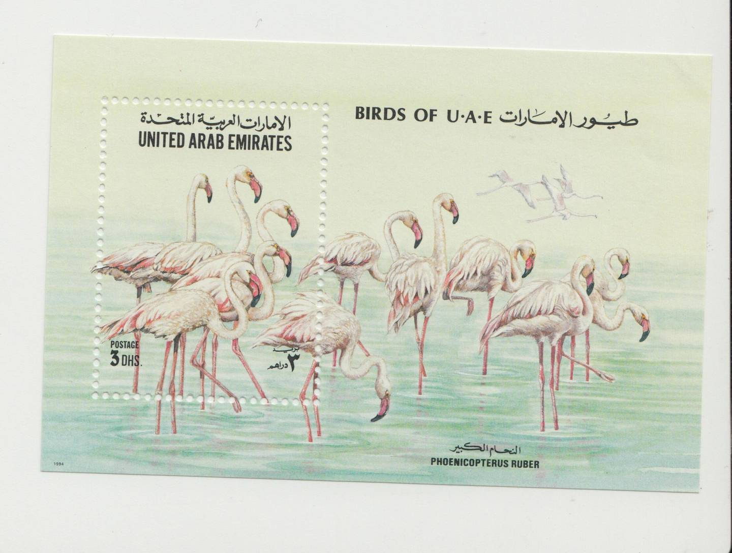 DUBAI, UNITED ARAB EMIRATES, Jan 28, 2015. UAE stamps issued in 1994. Photo: Reem Mohammed / The National  for first focus story  *** Local Caption ***  RM_POSTAL_1994_02.jpeg