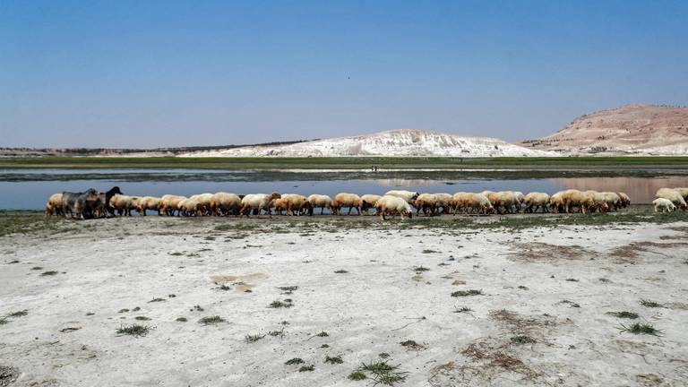 An image that illustrates this article The Middle East's water crisis isn't only due to climate change