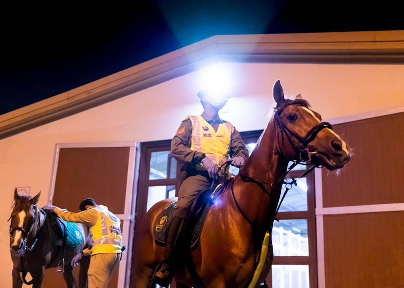 DUBAI, UNITED ARAB EMIRATES. 16 APRIL 2020. Dubai Mounted Police officers, in Al Aweer, prepare to load the horses into the trailer, as they prepare to patrol residential and commercial areas to insure residents are staying safe indoors during COVID-19 lockdown. They patrol the streets from 6PM to 6AM.The officers of the Dubai Mounted Police unit have been playing a multifaceted role in the emirate for over four decades. The department was established in 1976 with seven horses, five riders and four horse groomers. Today it has more than 130 Arabian and Anglo-Arabian horses, 75 riders and 45 groomers.All of the horses are former racehorses who went through a rigorous three-month-training programme before joining the police force. Currently, the department has two stables – one in Al Aweer, that houses at least 100 horses, and the other in Al Qusais, that houses 30 horses.(Photo: Reem Mohammed/The National)Reporter:Section: