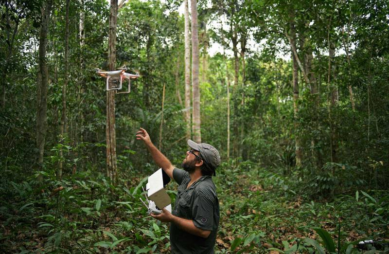 Felipe Spina Avino, World Wildlife Fund (WWF) forestry conservation analyst uses a drone to map an area of rainforest in the Ituxi reserve in the Western Amazon region of Brazil on September 18, 2017.  Parts of the Western Amazon rainforest have suffered some of the heaviest deforestion in the Amazon as a whole, with figures puting it at a third higher than last year. Illegal logging has been hard to police in a country in economic crisis.  / AFP PHOTO / CARL DE SOUZA / TO GO WITH AFP STORY by PAULA RAMON