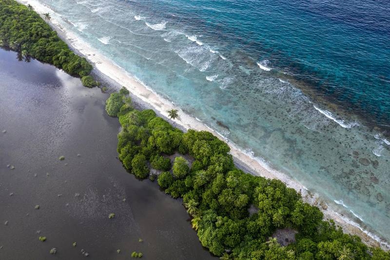 HITHADHOO, MALDIVES - DECEMBER 14: The Indian Ocean laps against Koattey wetlands on December 14, 2019 in Hithadhoo, Maldives. The neighbouring Koattey and Eydhigali Kilhi wetlands are among the largest wetlands in the Maldives and have become integral to the countrys EU and Australia-funded Climate Change Adaptation Project to preserve and manage the wetlands and utilise them as a natural defence against floods and rising seas. The wetlands can store several tens of million cubic meters of water, act as barriers against rising sea levels and flooding caused by extreme weather events, they also contribute to waste water management, groundwater recharge, freshwater storage, and purify water that flows through their systems. Plants found here are critical in controlling erosion. Along with coral reefs, wetlands are the primary defence that a small island nation like the Maldives has against climate change. (Photo by Carl Court/Getty Images)