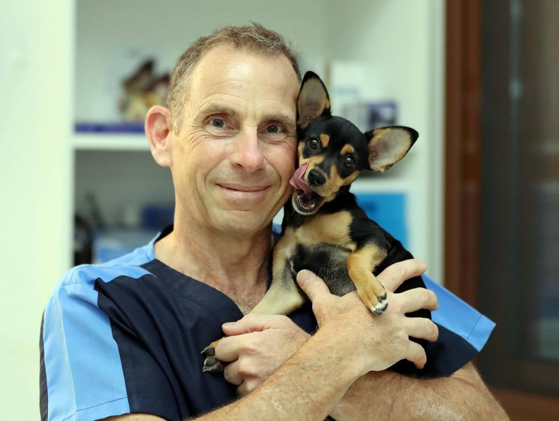 Dubai, United Arab Emirates - Reporter: Keith J Fernandez. Business. Dr Sam Westhead and his dog Goli. Pet owners talk about finance. Tuesday, July 14th, 2020. Dubai. Chris Whiteoak / The National