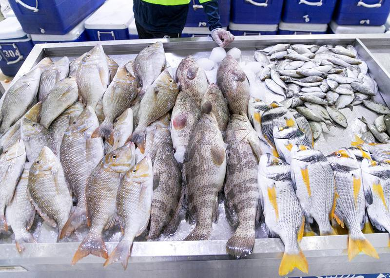 DUBAI, UNITED ARAB EMIRATES. 7 APRIL 2020. The Fish Market in the Waterfront Market in Deira, near Hamriya Port, has been given permission by authorities to reopen today. (Photo: Reem Mohammed/The National)Reporter:Section: