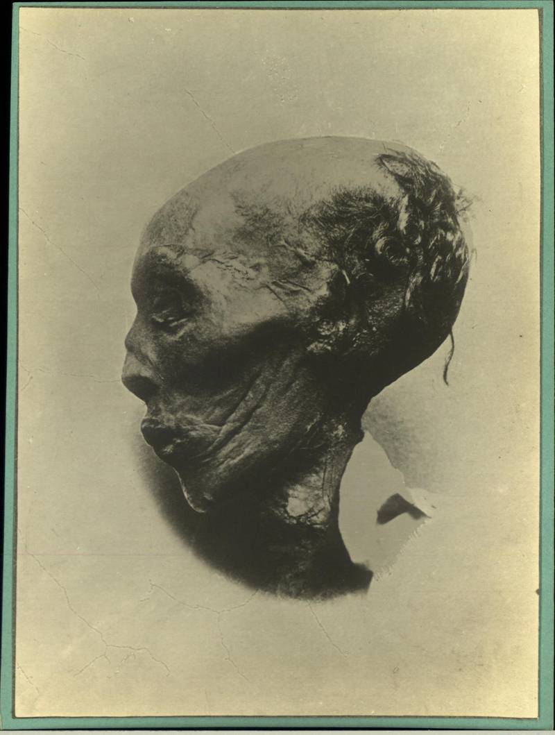 Mummified head of Egyptian Pharaoh Thutmose III, Egypt, 1900(Photo by Mansell/The LIFE Picture Collection via Getty Images)