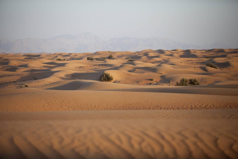 Dubai, Jan 18th, 2012 -- STOCK Photos of desert landscape of the Arabian Peninsula. Photo by: Sarah Dea/ The National